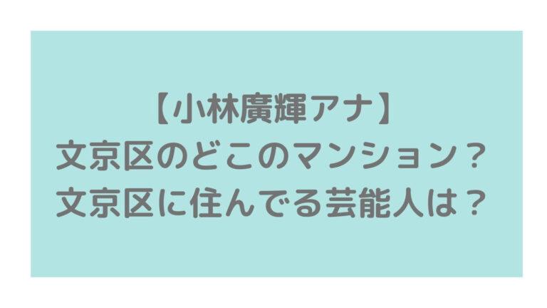 hirokikobayashi-bunkyoku