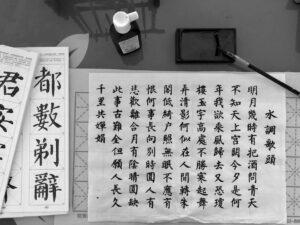 ふわちゃん中国語